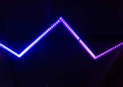 Joel_Dobermann_bateauGeneve_LED-5